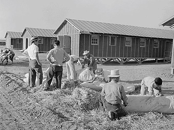 poston internment camp