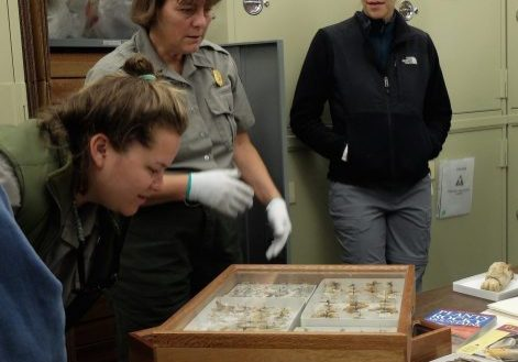 students and a RMNP conservator look at a display case