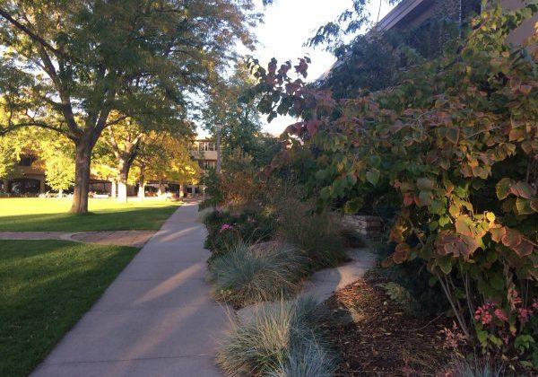 near clark fall 2016